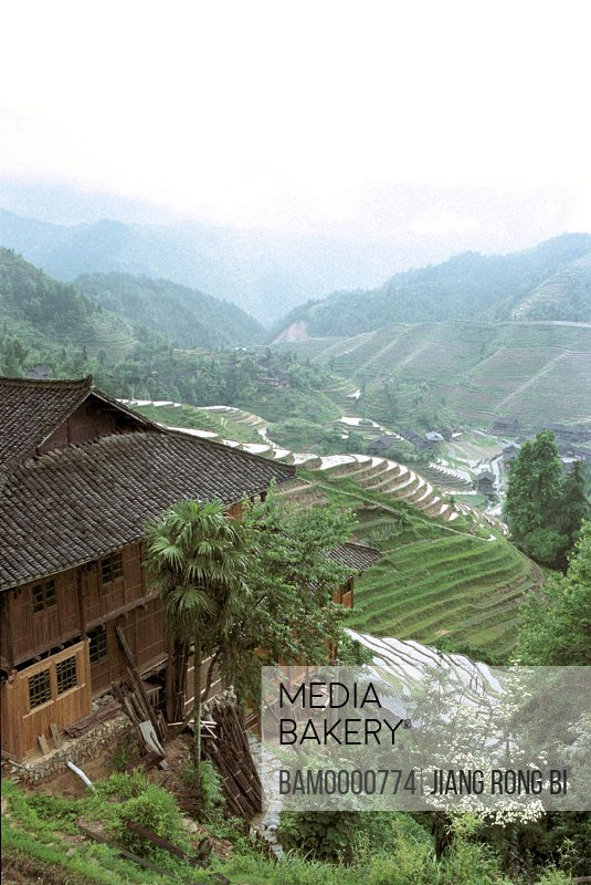 Elevated view of houses and terraced fields on Longji mountain, Longsheng County, Guilin City, Guangxi Zhuang Nationality Autonomous Region of People's Republic of China