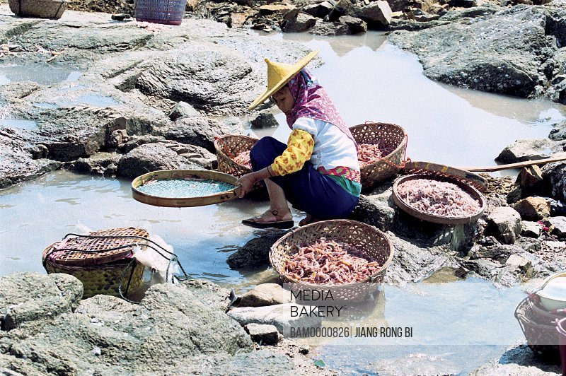 Elevated view of woman cleaning fish and Shrimps, Chongwu Town, Huian County, Fujian Province, People's Republic of China