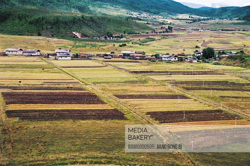 Elevated view of houses in cultivated field, Villages in Shangri-la, Shangri-la County, Diqing Prefecture, Yunnan Province, People's Republic of China