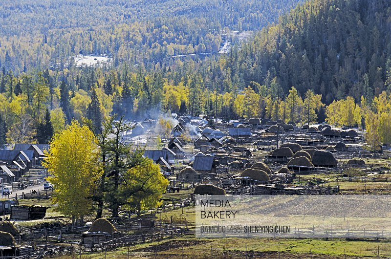 Pile of hay on wooden structure, Morning of the Baihaba Village, Habahe County, Xinjiang Uygur Autonomous Region of People's Republic of China
