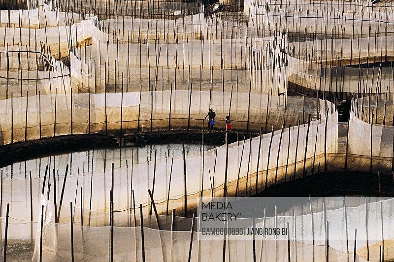 Elevated view of aqua farm, Xiapu County, Ningde City, Fujian Province, People's Republic of China