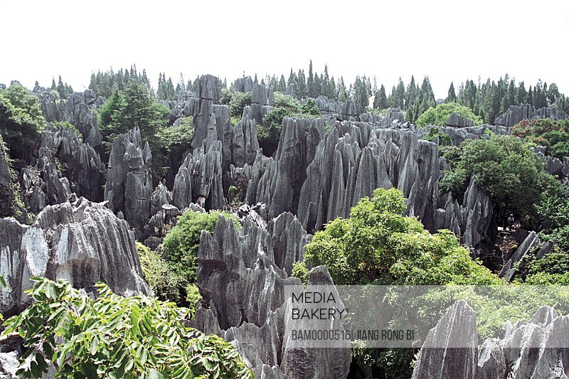Scenery of Stone Forest, Shiling County, Kunming City, Yunnan Province, People's Republic of China