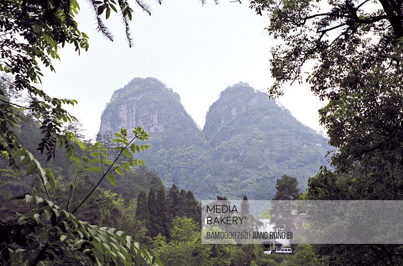Trees with mountains in background, Two udders peak in Wuyi mountain, Wuyishan City, Fujian Province, People's Republic of China