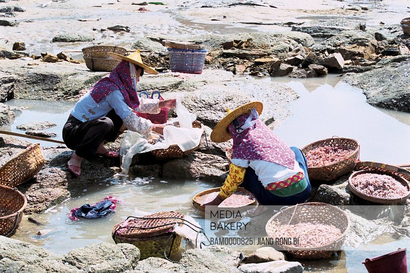 Elevated view of women cleaning fish and Shrimps , Chongwu Town, Huian County, Fujian Province, People's Republic of China