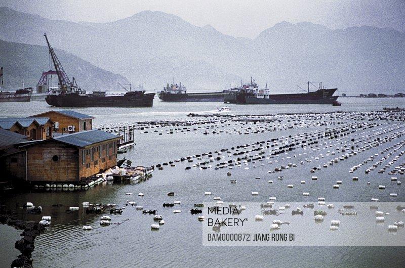 Marine Farm at Luoyuan , Luoyuan County, Fuzhou City, Fujian Province, People's Republic of China