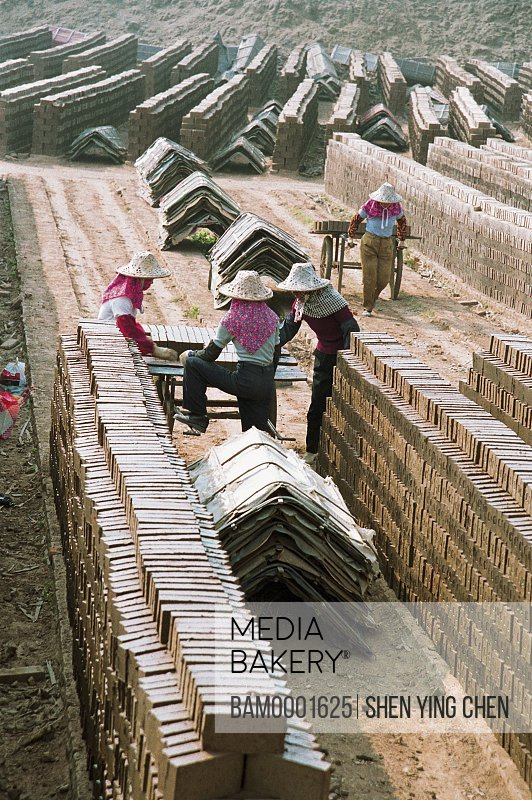 The Huian Women are Pulling the bricks in the brickyard, Xiaozuo brickyard, Huian County, Fujian Province of People's Republic of China