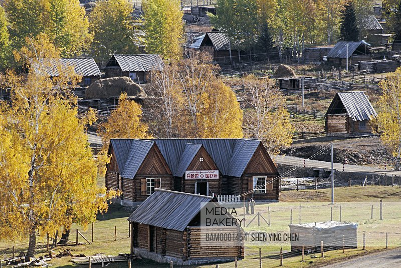 Elevated view of houses surrounded with trees, Morning of the Baihaba Village, Habahe County, Xinjiang Uygur Autonomous Region of People's Republic of China