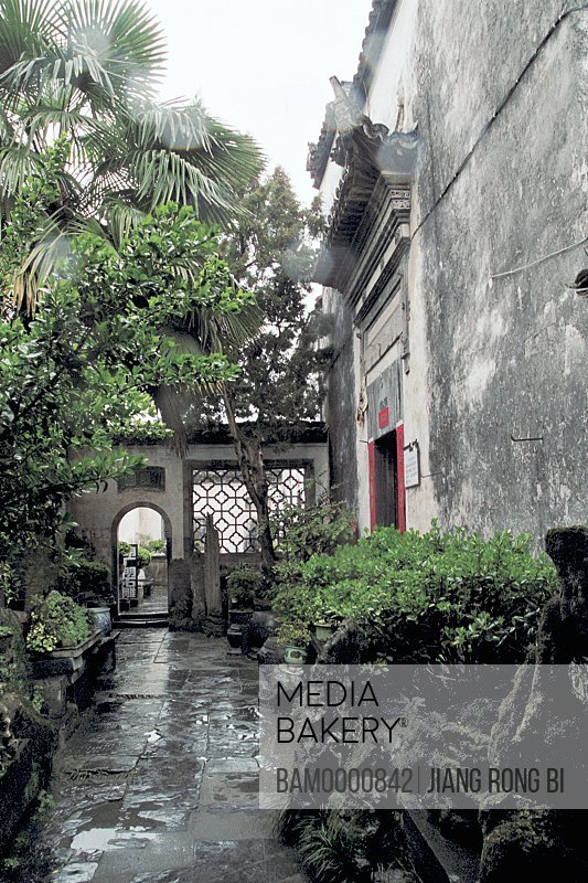 Plants along passageway of house, Western Court of Ancient Residence in Xidi Village, Yixian County, Anhui Province, People's Republic of China