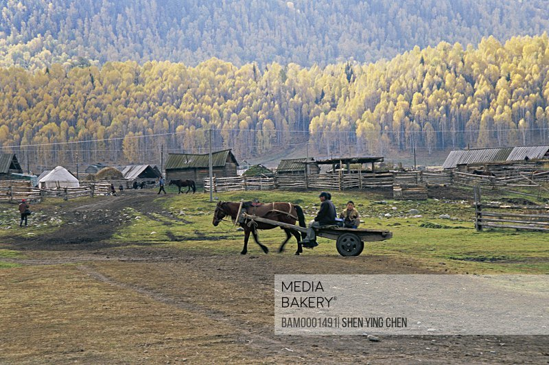 People traveling in a horse-cart with houses in the background, Carriage of Hemu Village, Buerjin County, Xinjiang Uygur Autonomous Region in People's Republic of China