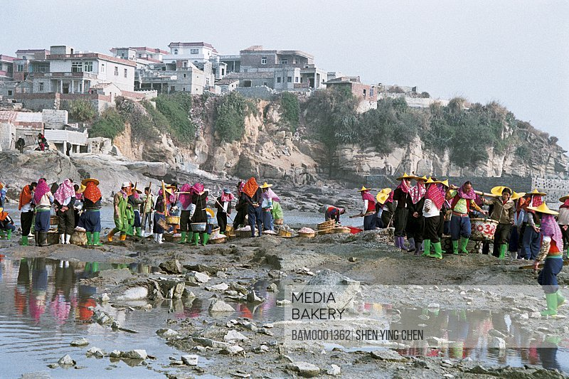 Huian Woman are selecting the sea goods at Xiaozuo Village wharf, Xiaozuo Village, Huian County, Fujian Province of People's Republic of China