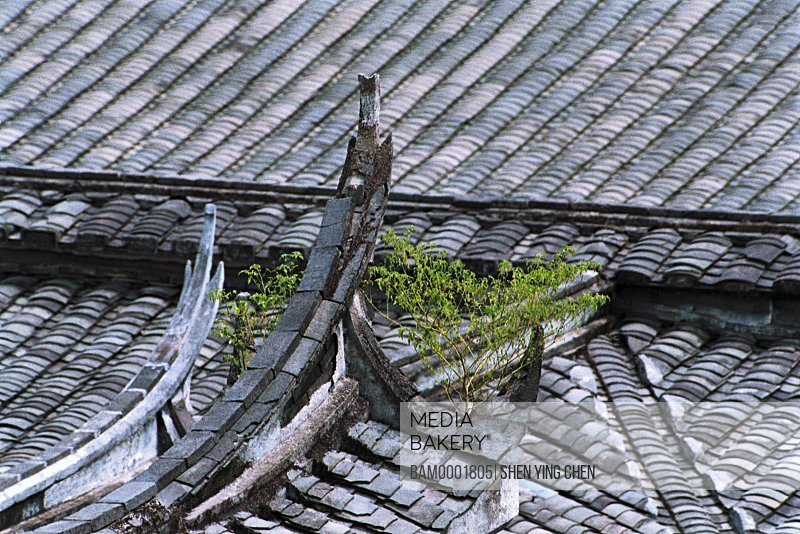 Elevated view of slated roofs, Building frame of Great Lin places, Great Honglin Places, Mingqing County, Fujian Province of People's Republic of China