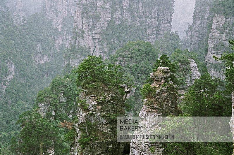 Elevated view of mountains, Shizhai scenery of the Zhangjiajie, Zhangjiajie City, Hunan Province of People's Republic of China