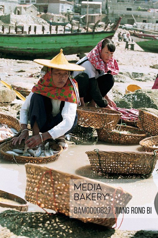 Women cleaning fish and shrimp with baskets on water, Chongwu Town, Huian County, Fujian Province, People's Republic of China