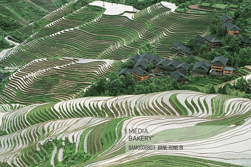 Elevated view of Longji terraced field in the Yao minority village, Longsheng County, Guilin City, Guangxi Zhuang Nationality Autonomous Region of People's Republic of China