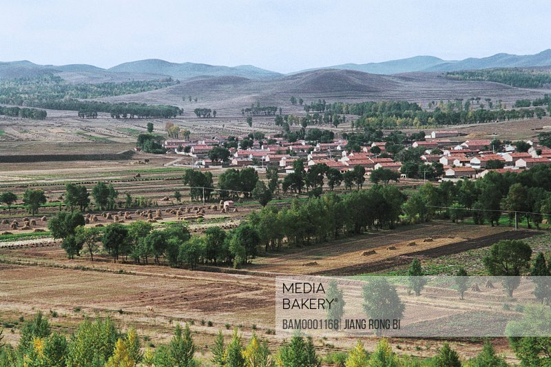 Vast field with trees and houses, Village and farm land interlace the wind-break forest, Guyuan County, Hebei Province of People's Republic of China