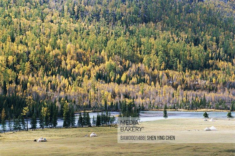 Scenery Shenxian Bay, Kenasi of Buerjin County, Xinjiang Uygur Autonomous Region in People's Republic of China