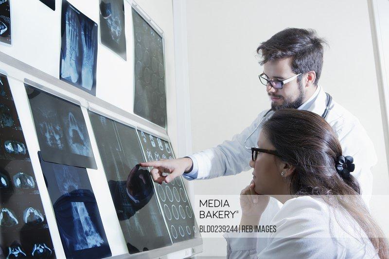 Hispanic doctors examining x-rays