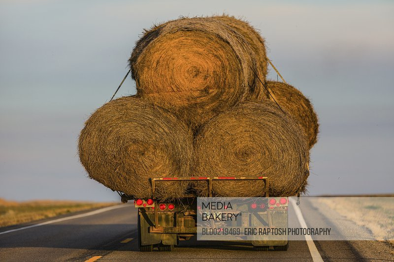 Truck carrying hay bales on rural highway