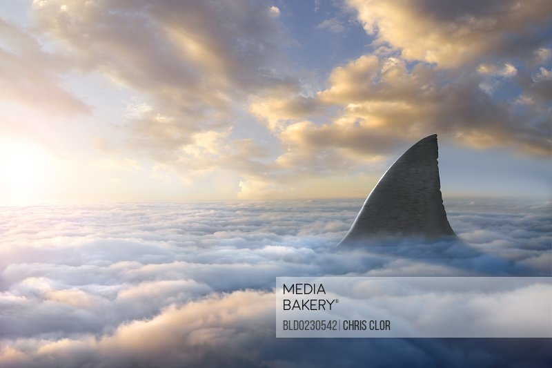 mediabakery photo by blend images shark fin above clouds