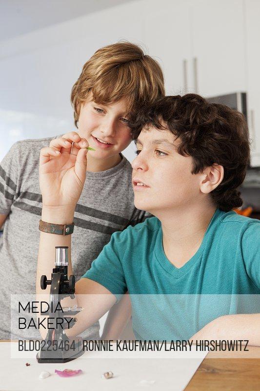 Caucasian boys doing science experiment