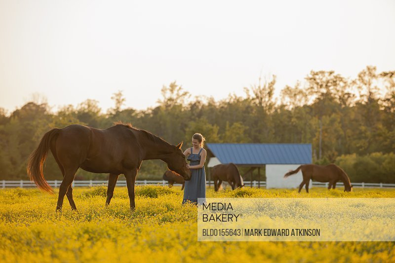 Caucasian girl petting horse in field