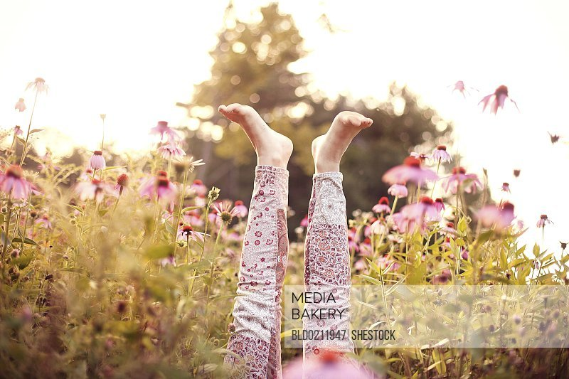 Legs of girl sticking up in wildflowers