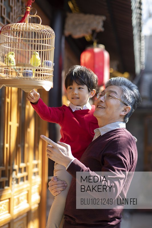 Happy grandfather and grandson with pet birds in cage