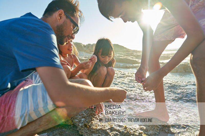 Family exploring tide pool on sunny beach