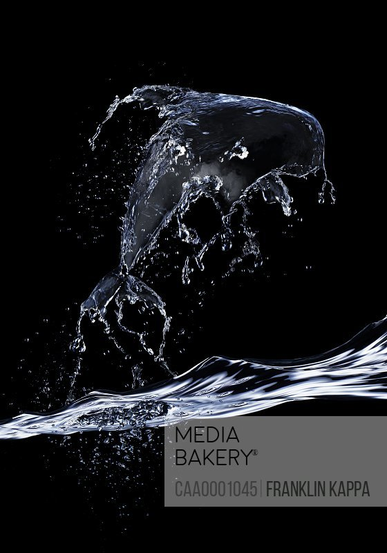 Water splash forming dolphin