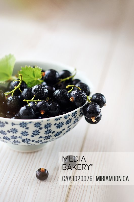 Juicy fresh black currants in bowl