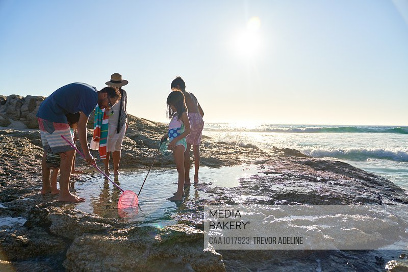 Family playing in tide pool on sunny ocean beach