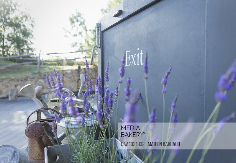 Lavender plant and watering cans at plant nursery exit sign