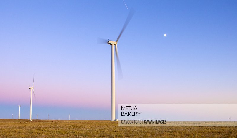 Wind Turbines in field against blue sky at dusk