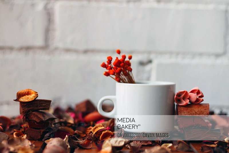 Coffee cup on an autumnal background.