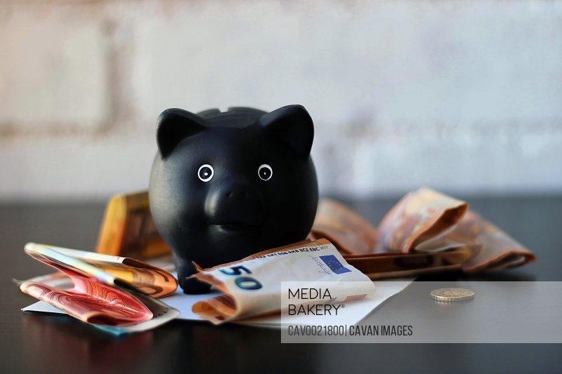 Piggy bank next to euro banknotes.