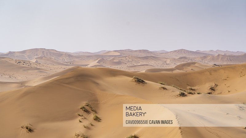 aerial view of sand dunes in the Namibian desert