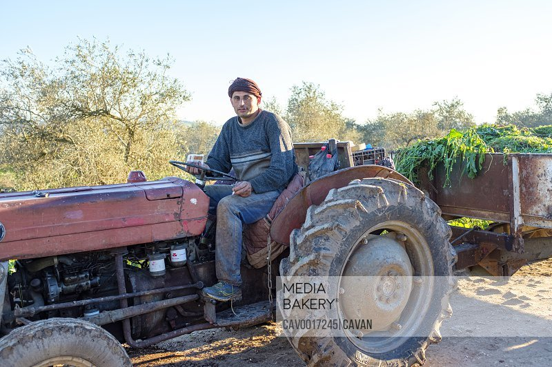 Palestinian farmer on a tractor, Burqin, Jenin, West Bank, Palestine <br><br><span style='color: red'>Editorial Use Only.</span><br><br>
