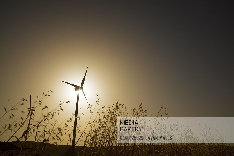 Windmills for electric power production at sunrise.