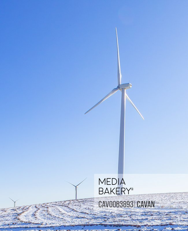 Wind turbines in a snow covered field with blue sky
