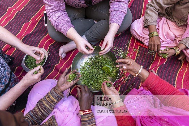 A detail shot of diverse women's hands preparing cilantro.