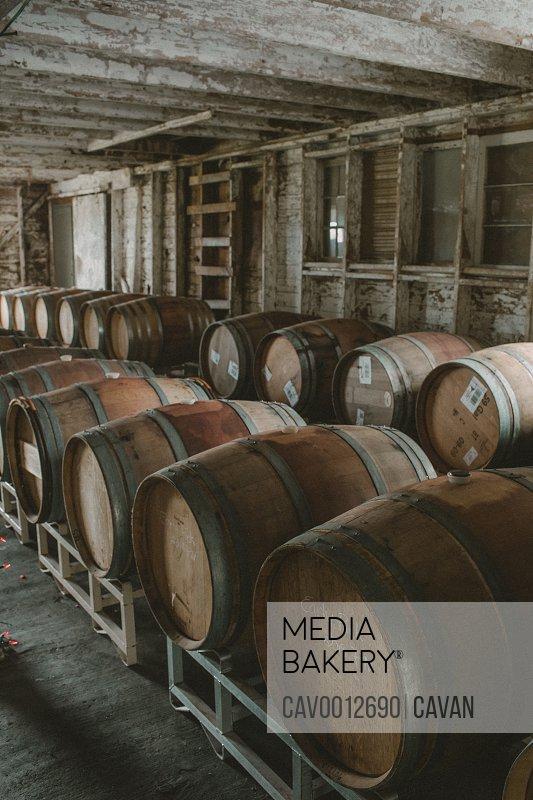 Wine barrels in an old barn turned wine cellar