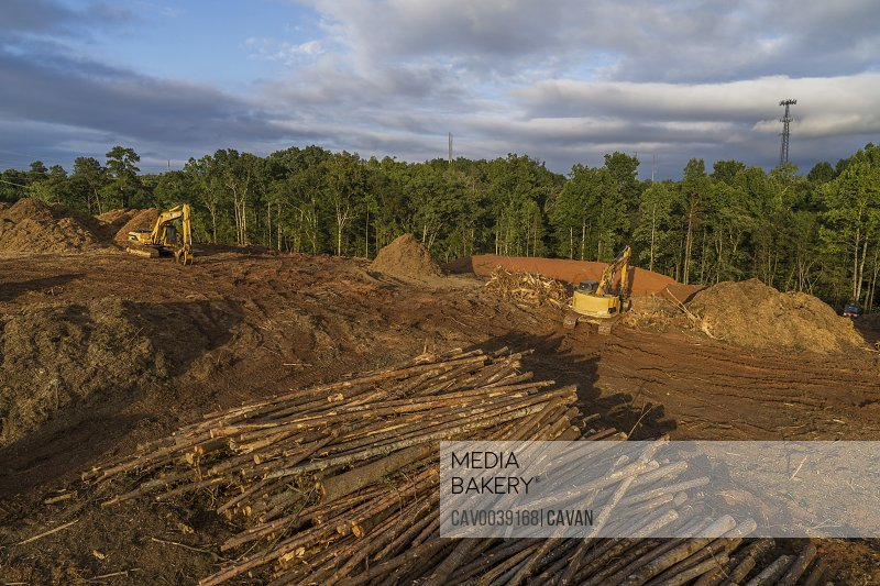 Land Clearing for Construction Site, Suwanee, Georgia
