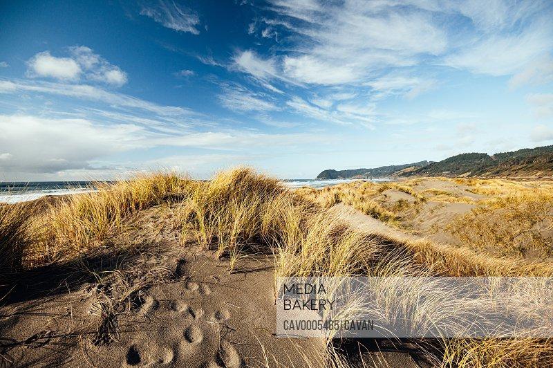 Footprints. Secret Beach, Samuel H Boardman Scenic Corridor