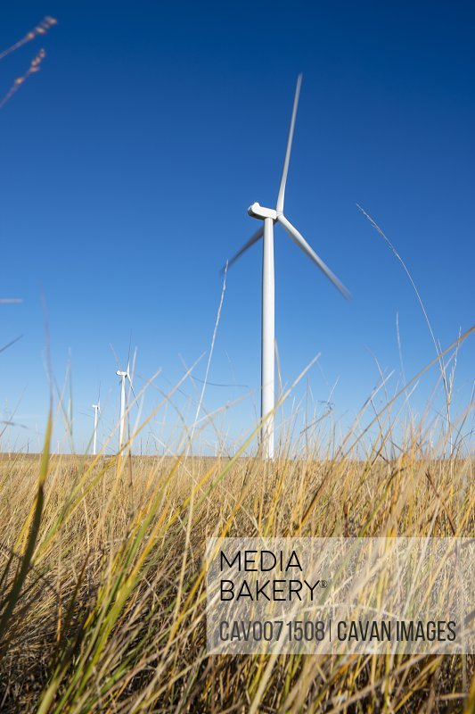 Wind Turbines in field against blue sky