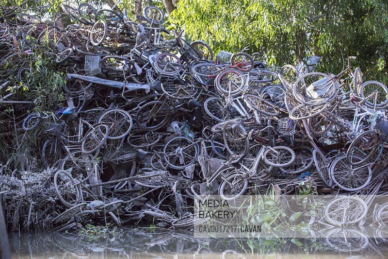 A pile of junked bicycles