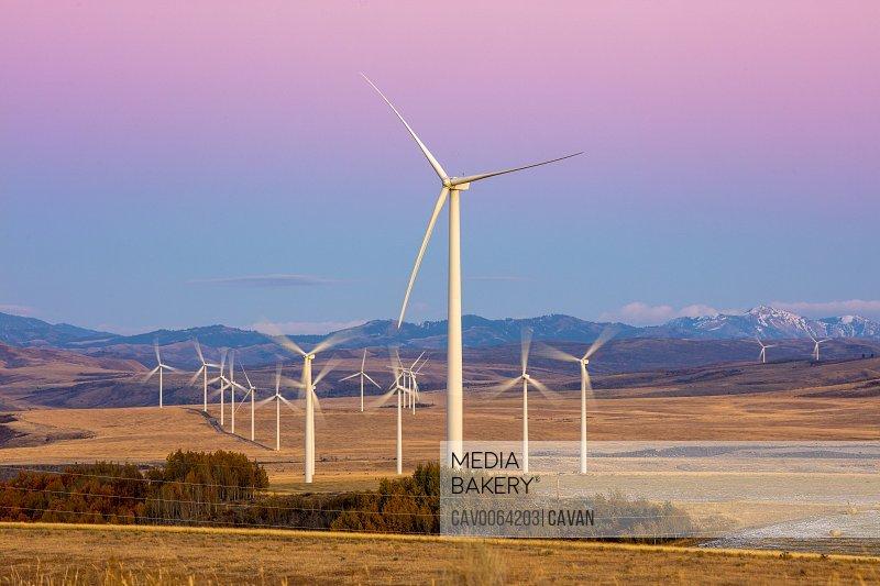 Wind turbines in a field with clear purple sky