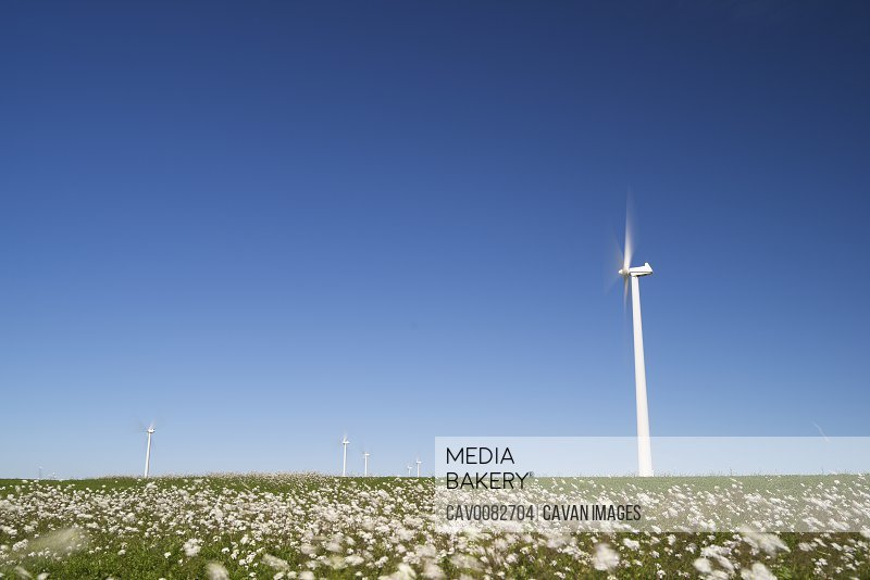 Windmills for renewable electric energy production in Spain.