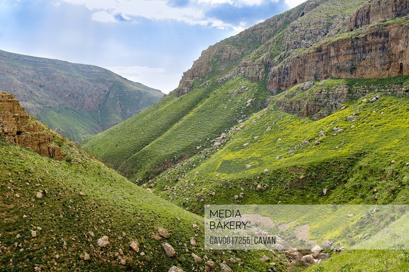 Wadi Auja gorge in spring, Ramallah and al-Bireh, West Bank, Palestine