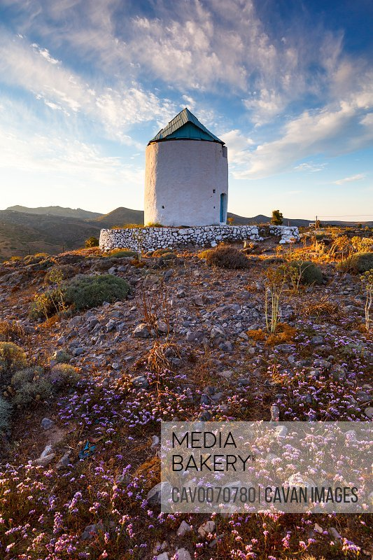 Old windmill and late spring flowers on Kimolos island in Greece.