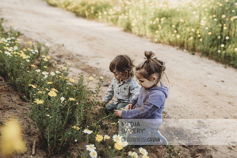 Little children playing in a flower field